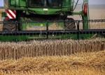 期货 - 美国小麦期货从2周高点回落