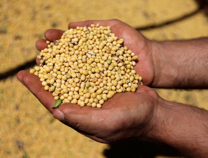 美国干旱引发粮食供应担忧 玉米、小麦、大豆齐创逾7年新高