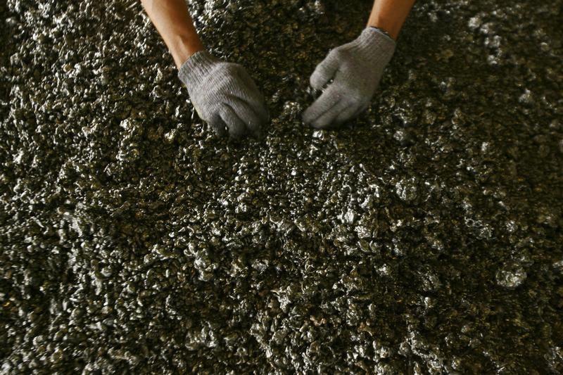 菲律宾最大镍矿生产商关停矿山 因多名员工感染新冠病毒